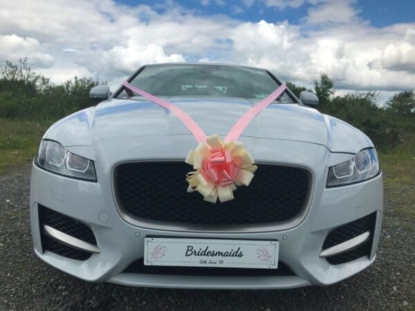 Visualisation - White plate on the car - Personalised Number Plates - Occasion Cars